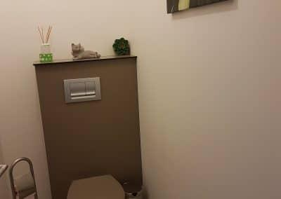 coffrage wc suspendu en panneau compact